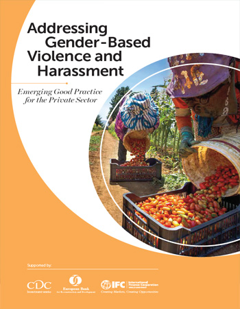Addressing Gender-Based Violence and Harassment: Emerging Good Practice for the Private Sector