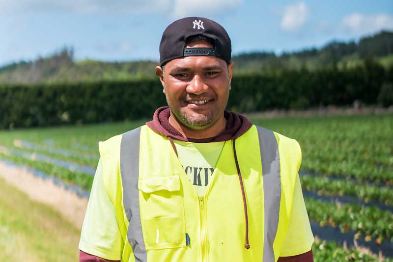 Money sent home by Sione Tau, a Tongan who picks strawberries in New Zealand, helps meet his children's school obligations.