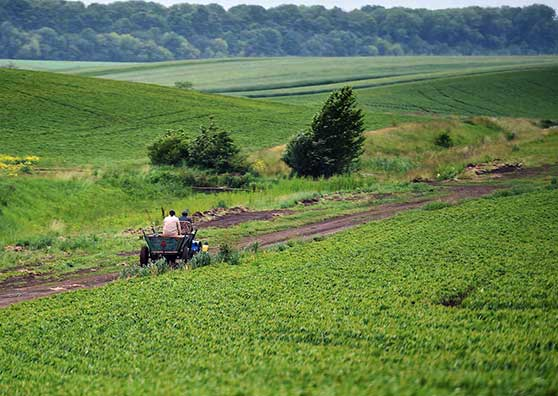 Tomorrow's Harvests Fund Today's Investments in Ukrainian Farms