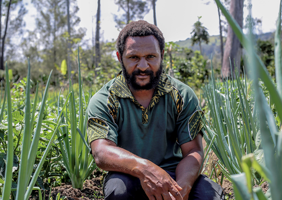 A Better Deal for Farmers in Papua New Guinea's Western Highlands