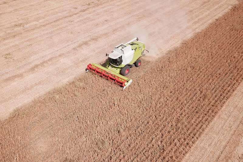 A combine harvests a soya-bean field in Paraguay.