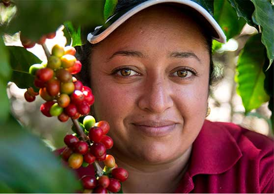 Microfinance Yields Better Futures for Honduran Farmers