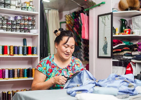 A Tailored Solution to Support Small Business in Mongolia