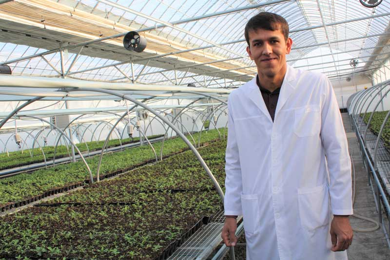 Researchers at Gala Osiyo Non develop seedlings for export at a state-of-the-art laboratory and greenhouse.