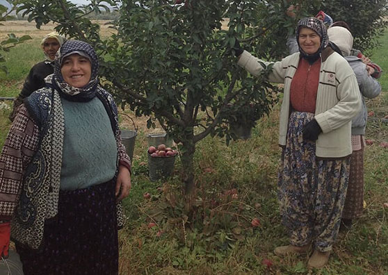 New Financing Tools Empower Turkey's Women Entrepreneurs