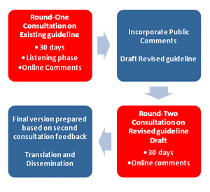 Round-One: Consultation on Existing Guidelines; Incorporate Public Comments; Round-Two: Consultation on Revised Guideline Draft; Final version prepared, translated and disseminated